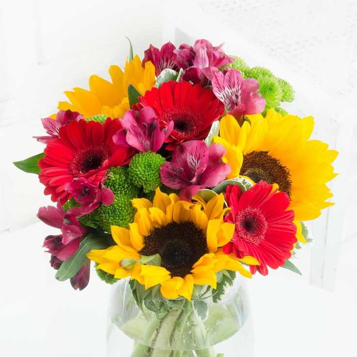 Vibrant Cheer - We're sure they'll love this bold and beautiful mix of blooms.