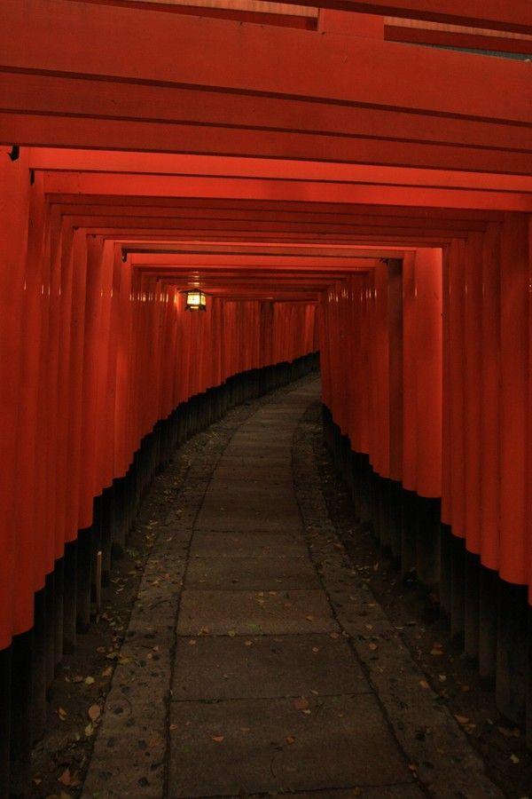Toris  Kyoto Japan
