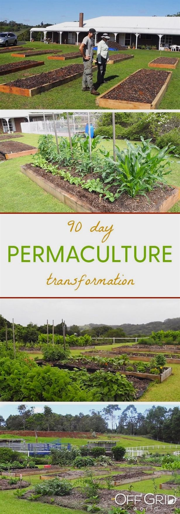 The definition of permaculture is pretty simple an