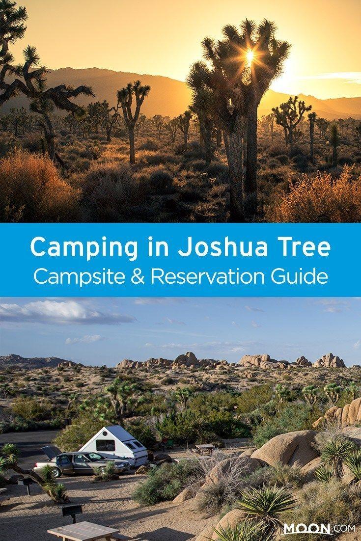 Joshua Tree National Park Campgrounds Joshua Tree National Park National Parks Joshua Tree