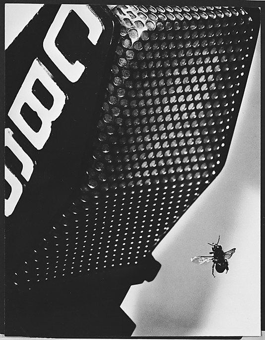 [Bee and Microphone] / Andre Kertesz / 1930s / gelatin silver print