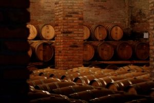 Explore the wineries of Cousino Macul and Concha y Toro, Excursion in Santiago, Santiago and the Atacama Desert Tour - Chile