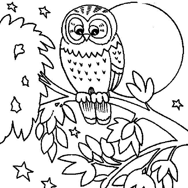 10 best eule ausmalbilder images on pinterest owls owl. Black Bedroom Furniture Sets. Home Design Ideas
