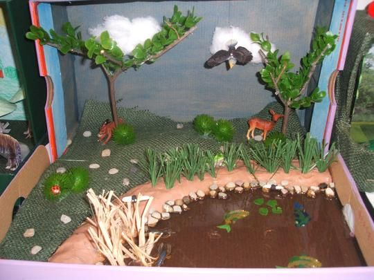 Dioramas, Projects and Search on Pinterest