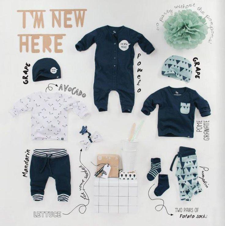 z8 jongens, z8 newborn winter 2015-2016, z8 babykleding, nieuwe collectie Z8…