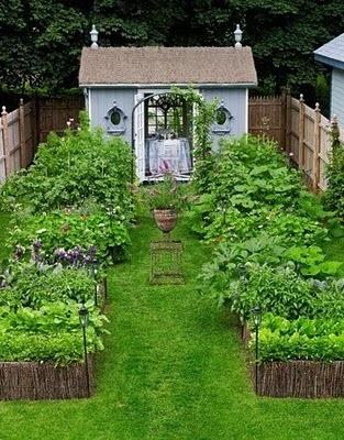A gorgeous English vege garden