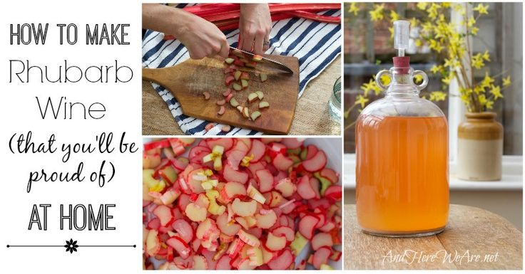 How to Make Rhubarb Wine - And Here We Are