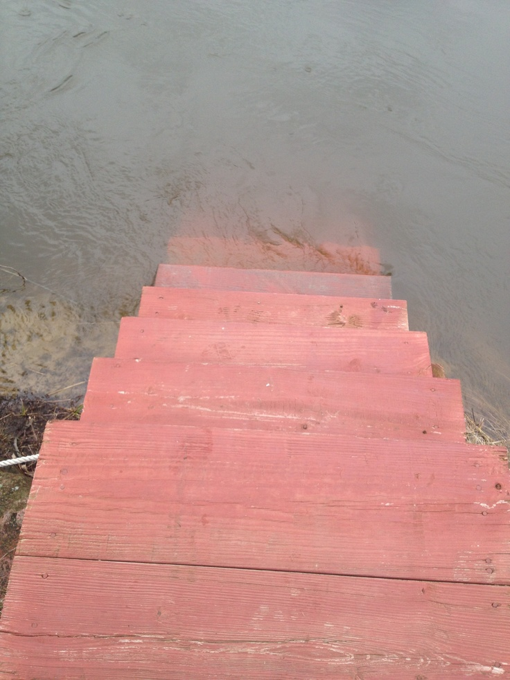 Take a walk down into the flooded river...it just sit down on the red steps and enjoy the view.