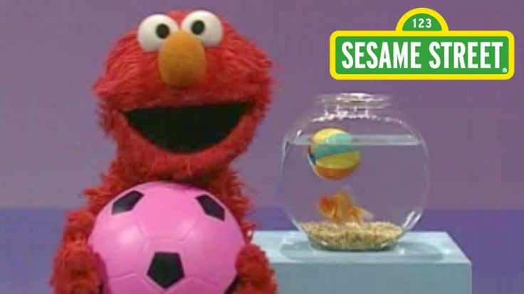 Sesame Street: Elmo's World: Play Ball!  Okay not a book but i wanted to save this for Brent.
