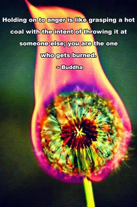 Holding on to anger is like grasping a hot coal with the intent of throwing it at someone else; you are the one who gets burned. ~Buddha