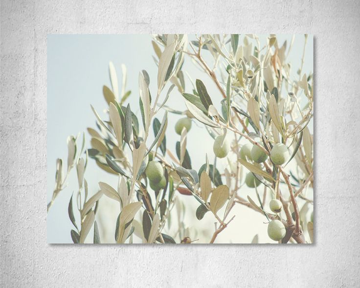 Nature photography Leaves print Olive branch photography Aqua rust wall art Pastel wall art Grey green home decor Romantic wall art print by LightBluePhotography on Etsy
