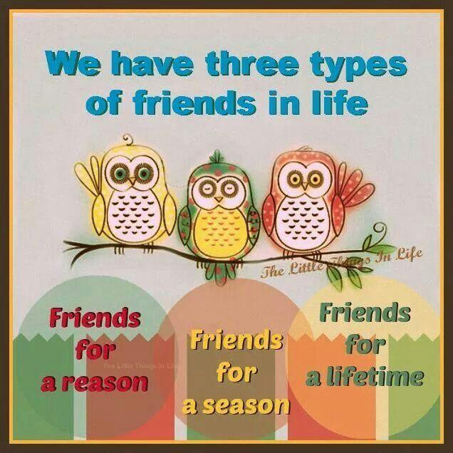 best soul friends images friendship the words  soul friends