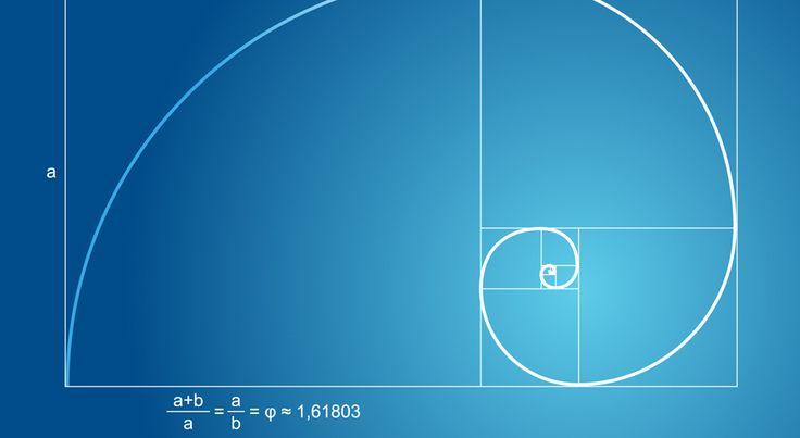 A Brief Introduction to Quadratic Equation #quadraticequation #solvequadraticequation