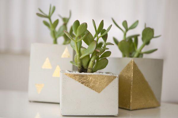 Groenkapje » DIY Plantenbak
