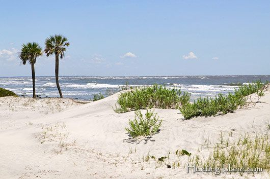 Hunting Island near Beaufort, SC....love it!
