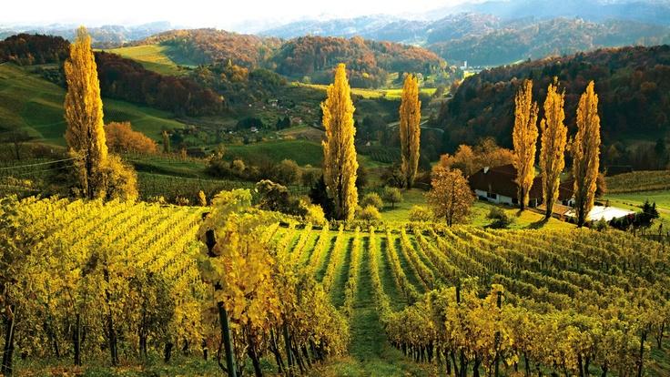 #Südsteiermark: Die österreichische Toskana Credit: Steiermark Tourismus