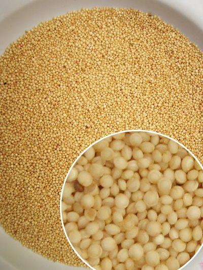 El Amaranto posee un alto contenido proteico, aproximadamente 17%. La semilla de Amaranto compite bien con variedades convencionales de trigo que contiene de 12 a 14% de proteína, con el arroz que contiene de 7 a 10%, con el maíz que contiene de 9 a 10% de proteínas y con otros cereales de gran consumo. El Amaranto tiene el doble de lisina que el trigo, el triple que el maíz, y tanta lisina como la que se encuentra en la leche.