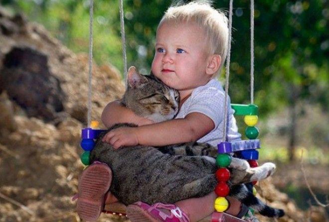Кошки - лучшие друзья :-)