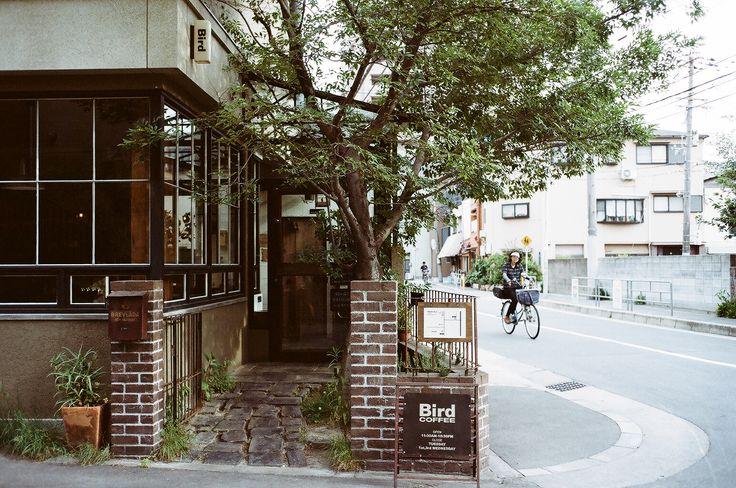 Osaka: Bird - Kinfolk