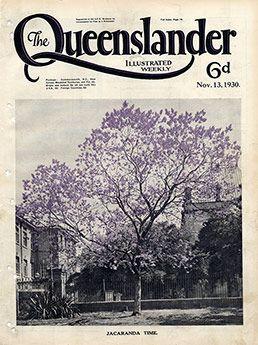 Poster Cover from The Queenslander 1930 - Jacaranda Tree | ISBN: PODQL066 Format: Print Art Dimension: 594mm X 420mm