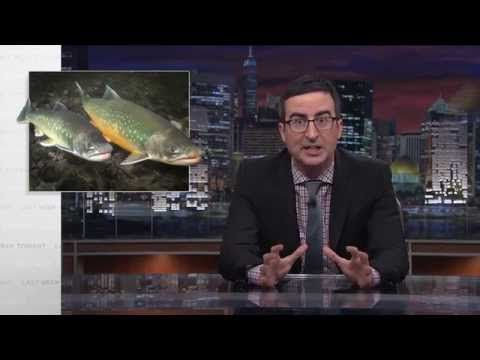 Last Week Tonight with John Oliver: Salmon Cannon (HBO) - YouTube. The funniest thing you'll see all day!