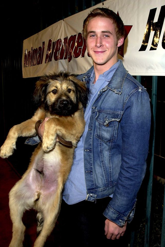 <p>After starring in a string of family TV shows, Gosling made his move to a feature film career with a supporting role in <i>Remember the Titans</i> in 2000. The following year he hit the red carpet — with adorable dog in tow — to support fellow actor Shannon Elizabeth's rescue group. <i>(Photo: Jeff Vespa/WireImage)</i></p>