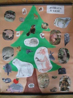 Zvířata v lese