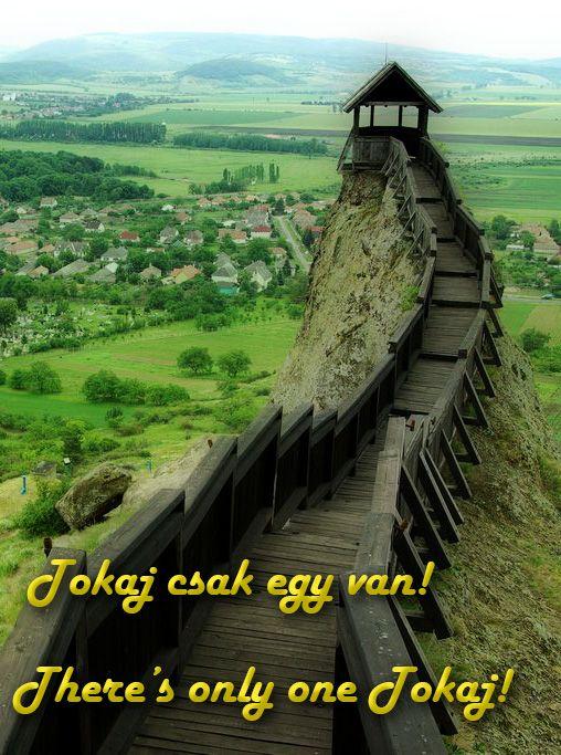Miskolctól 54 km-re keletre fekszik, a híres Tokaj-hegyaljai borvidéken, két folyó, a Tisza és a Bodrog találkozásánál, a Kopasz-hegy lábánál, a Tisza Rakamazzal szemközti oldalán. Tokaj fejlődésében nemcsak a bortermelésben és borforgalmazásban játszott szerepe, hanem közlekedési csomóponti fekvése is közrejátszott. Tokaj volt a Kelet-Felvidék és a Kelet-Alföld között zajló szekérforgalom legfontosabb kapuja.