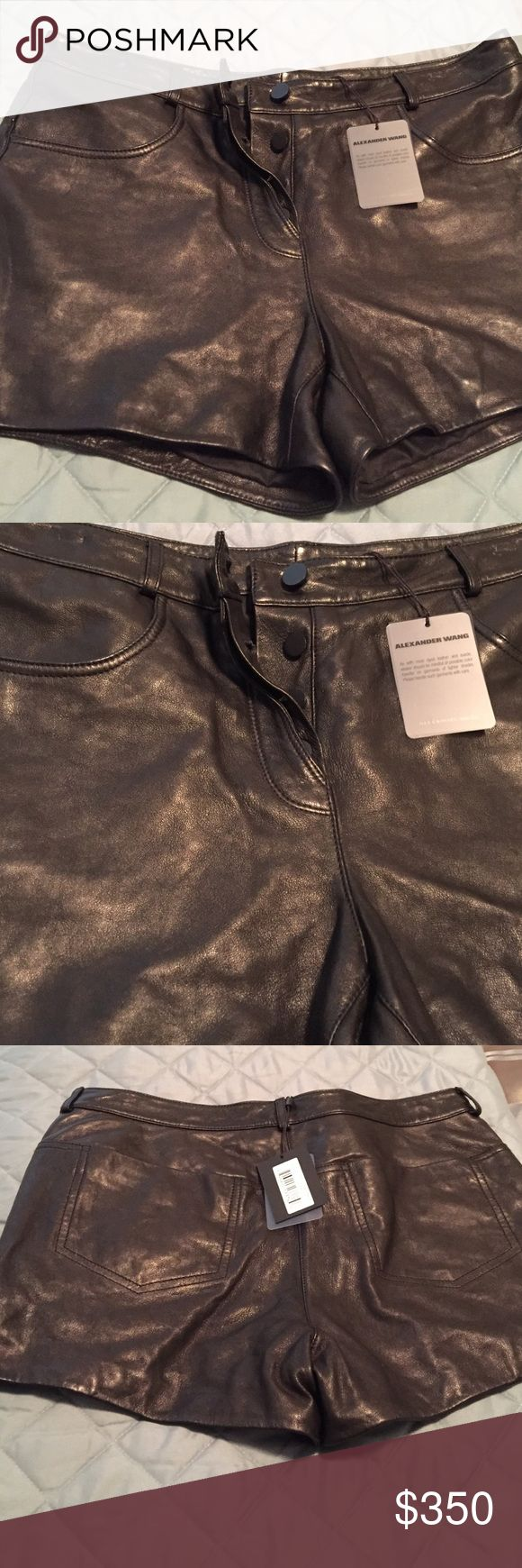 $350 Beautiful supple leather shorts...could pair with a nice sweater,tights and a pair of boots Alexander Wang Shorts