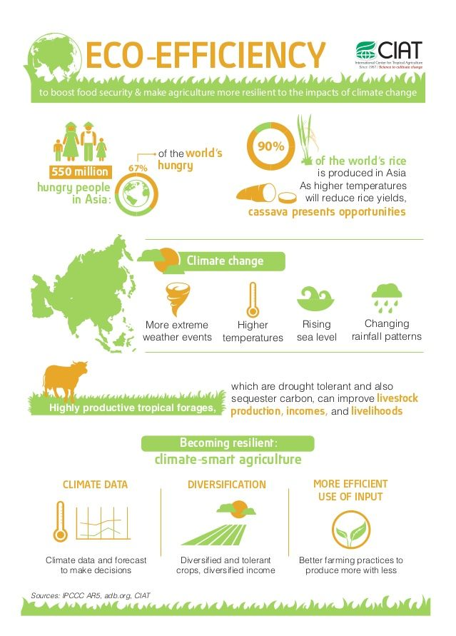 Eco-efficiency to boost food security & make agriculture more resilient to the impacts of climate change in Asia