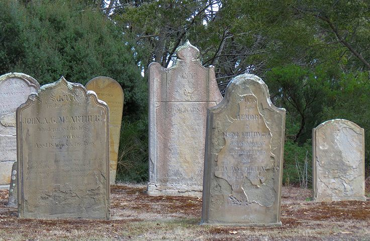 Graves on the grisly Isle of the Dead, a cemetery adjacent to Port Arthur. One of our top picks for Tassie's Unique experiences (Tourism Tasmania & Kathryn Leahy) #uniquetassie