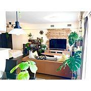 Lounge,観葉植物,IKEA,テーブル,お気に入り,サイドテーブルに関連する他の写真