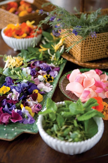 ... herbs and edible flowers.Flower Travel, Edible Ffower, Aroma Herbs, Herbs Gardens, Herbs Flow, Herbs Spics, Flower Salad, Edible Flowers