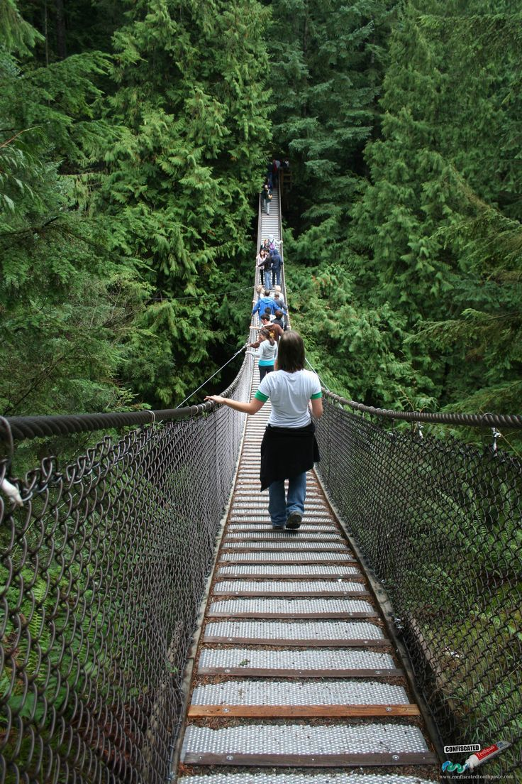 Capilano suspension bridge, Canada. All the Countries I Have Visited … Plus Photos http://www.confiscatedtoothpaste.com/all-the-countries-i-have-visited-plus-photos/