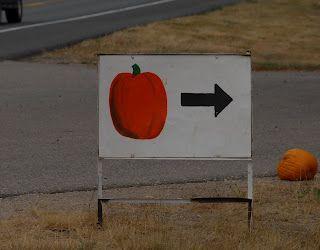Loukonen Farm: Not Just A Gem of a Local Pumpkin Patch