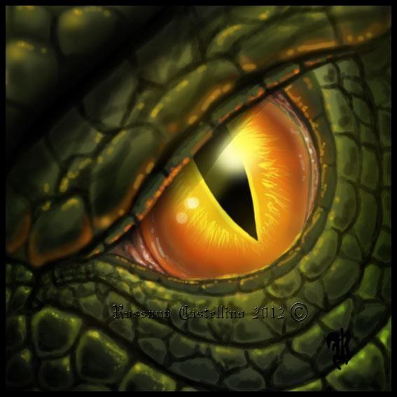 Dragon Eye by Rossana Castellino