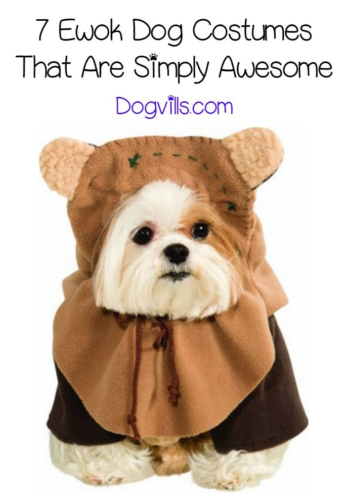 These pups have the right idea with these Ewok dog costume ideas. Get some Star Wars costume inspiration for your pup from our list!