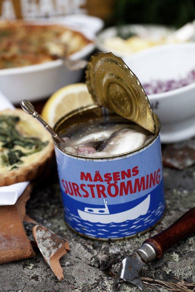 Surströmming – roliga fakta - Mitt Kök