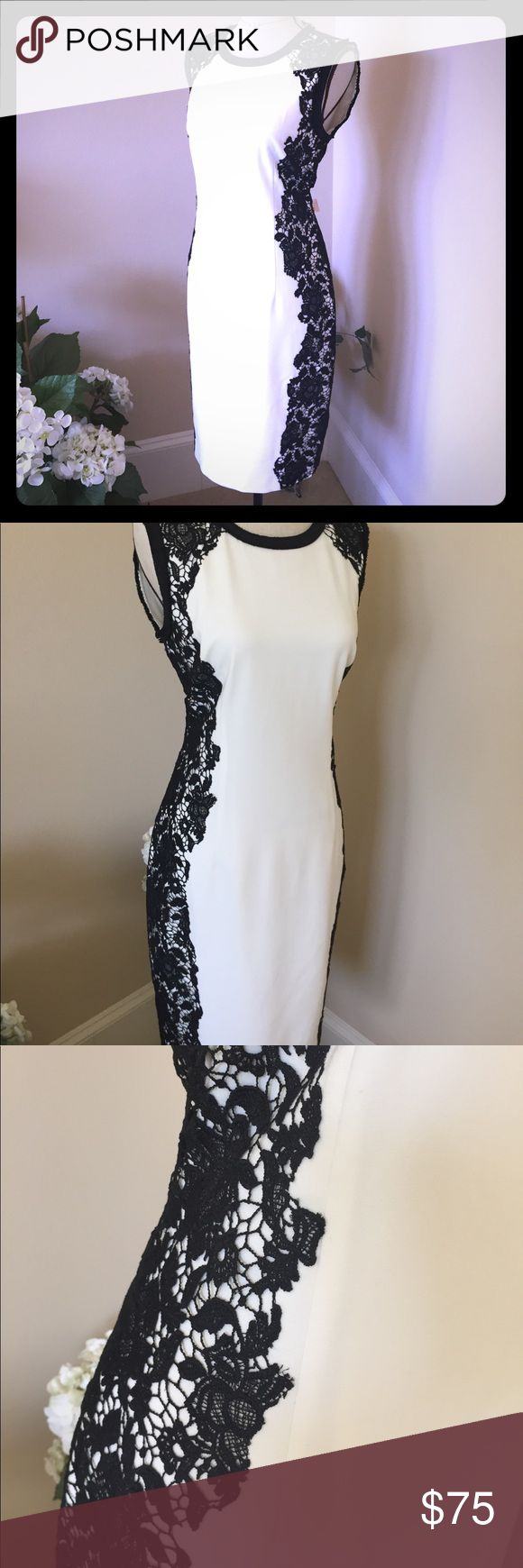 Tahari dress size 6 Sharp and very smart white dress with stunning black lace down both sides emphasizing a  real hour glass shape . Perfect teamed with any color so perfect all season T Tahari Dresses Midi