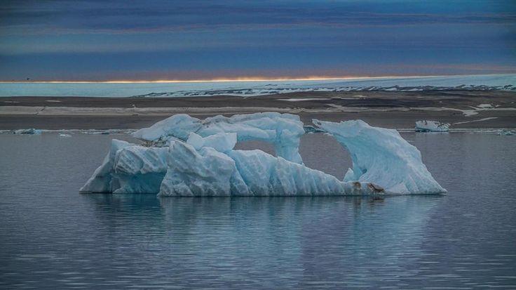 Horizon on fire 🔥😱 #midnightsun 🌅 #sonya7RII #Arctic #NorthPole [ Location: Svalbard, Norway ] #BurnTheBucketlist 🔥 Follow us on Facebook or Instagram @burn_the_bucketlist 😉
