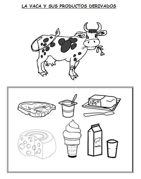 41 best Proyecto LA VACA Y LA LECHE images on Pinterest  Cow