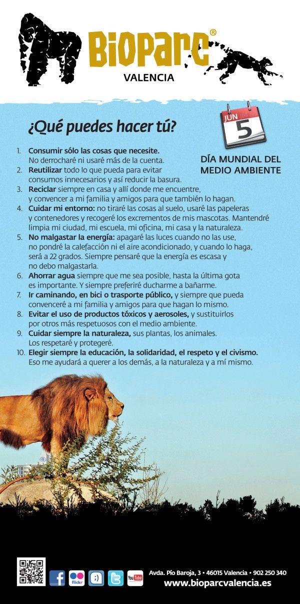 ¿Qué puedes hacer tú? | 5 de junio: Día Mundial del Medio ambiente 2012 #DiaMundialdelMedioambiente #naturaleza