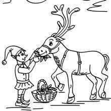 Weihnachtswichtel füttert ein Rentier zum Ausmalen