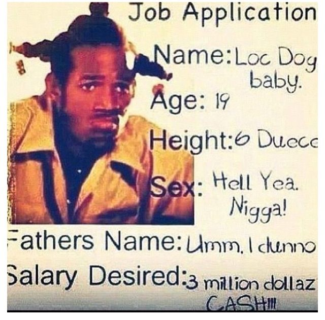 loc dog job application from movie don u0026 39 t be a menace to