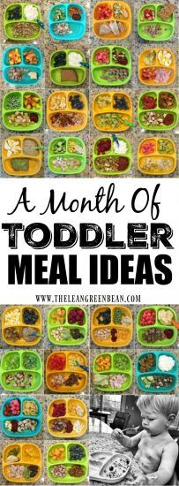 Here are 28 Easy Toddler Meal Ideas from a Registered Dietitian mom. They're quick, healthy and great for lunch or dinner.