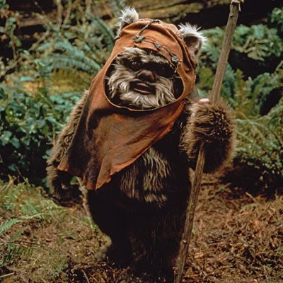 Ewok--O.M.G!! I LOVED this when I was a kid!! Still have them on VHS and I have to say the commercials are hilarious!
