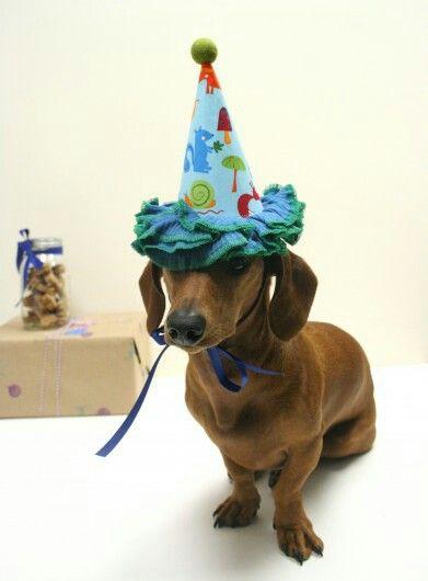 Dachshund Shaped Birthday Cake
