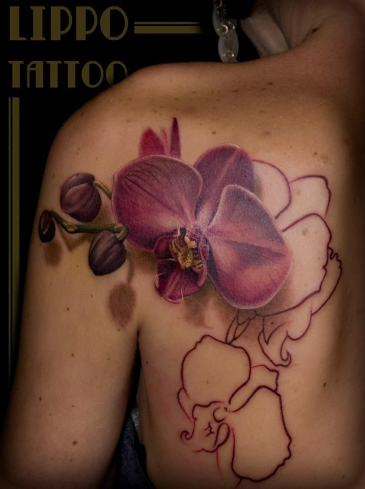 best 42 tatouage fleurs orchid e ideas on pinterest fleur orchid e id es de tatouages et. Black Bedroom Furniture Sets. Home Design Ideas
