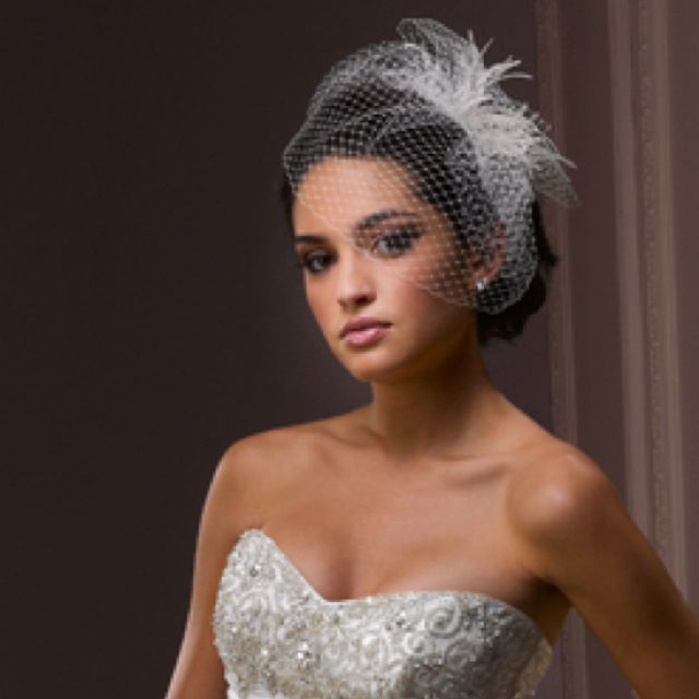 BirdCage Bridal Veil with dainty ostrich feather accent, so so pretty. See more…