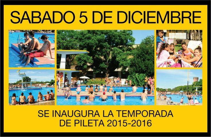 Se inagura la temporada de pileta 2015 2016 novedades for Piletas en zona norte para pasar el dia 2015
